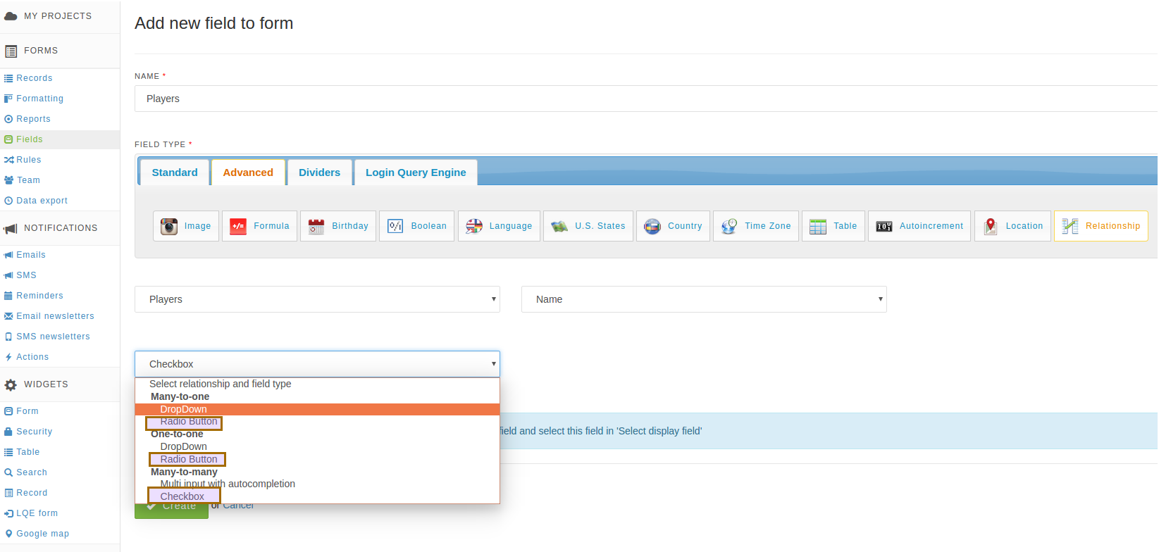 New relationship controls radio button and checkbox