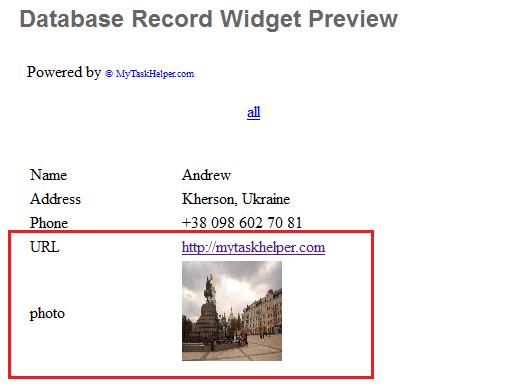 Record Widget page result